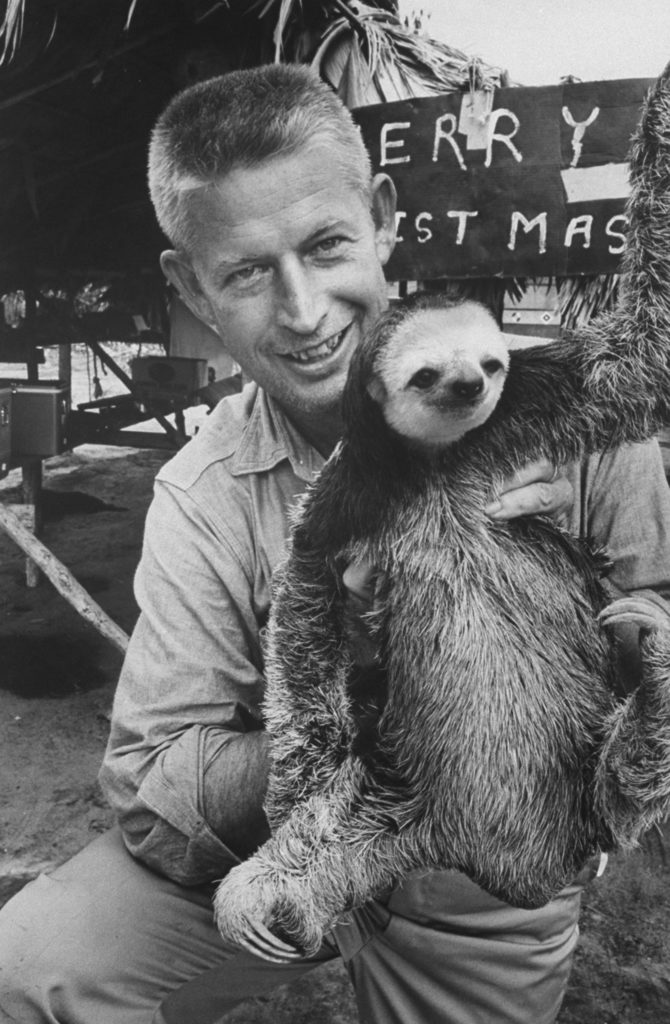 Stan Wayman holding a sloth. (Photo by Stan Wayman/The LIFE Picture Collection © Meredith Corporation)