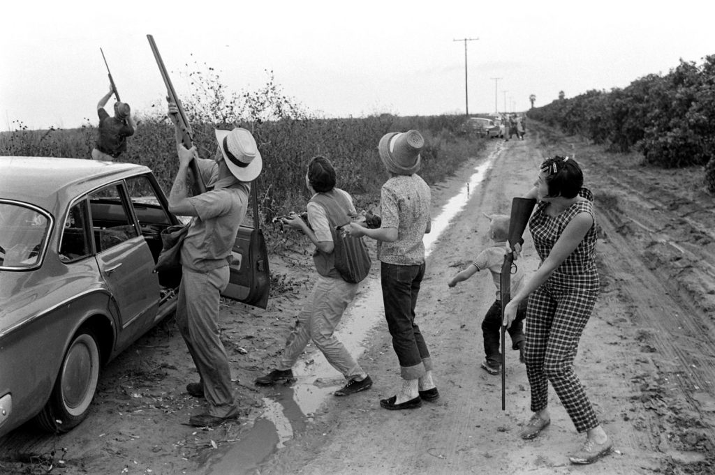 White-wing dove hunting in Texas, 1961.