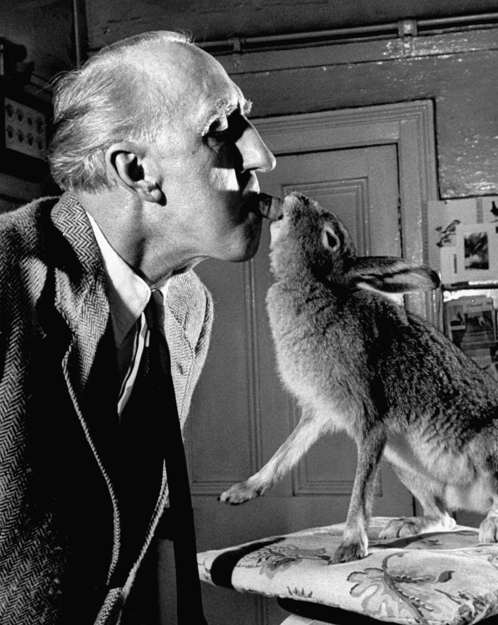 Cecil S. Webb, director of the Dublin Zoo, with Horace the hare