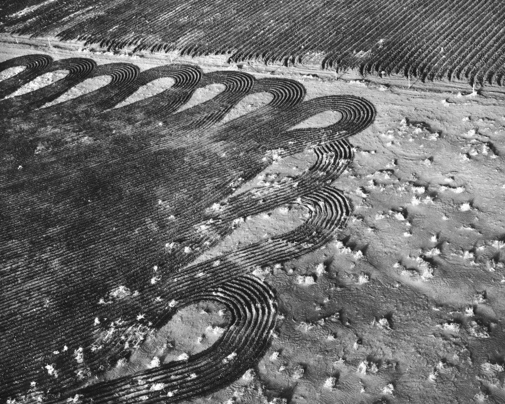Colorado Dust Bowl, 1954.