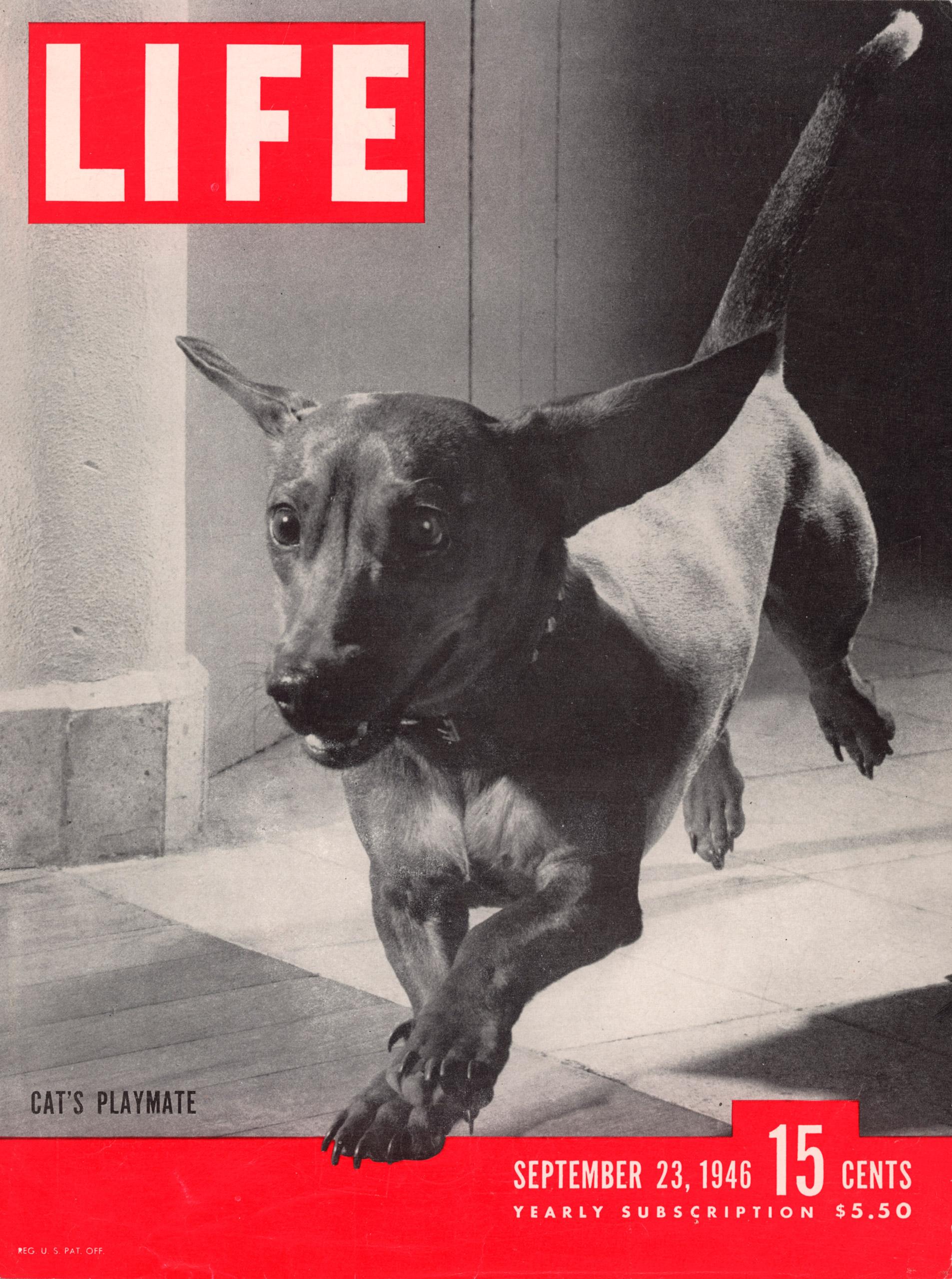 September 23, 1946 LIFE Magazine cover