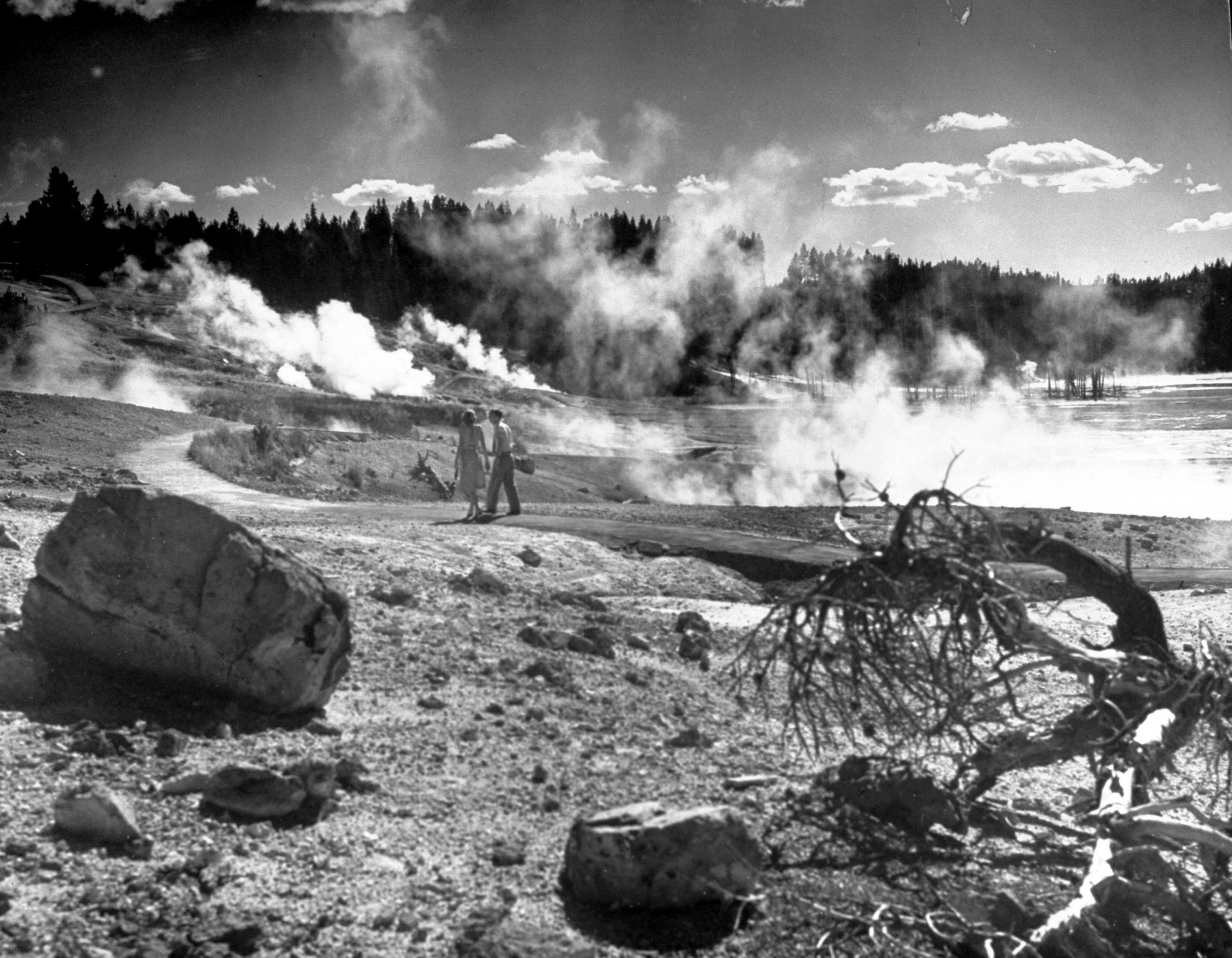 Yellowstone National Park 1946