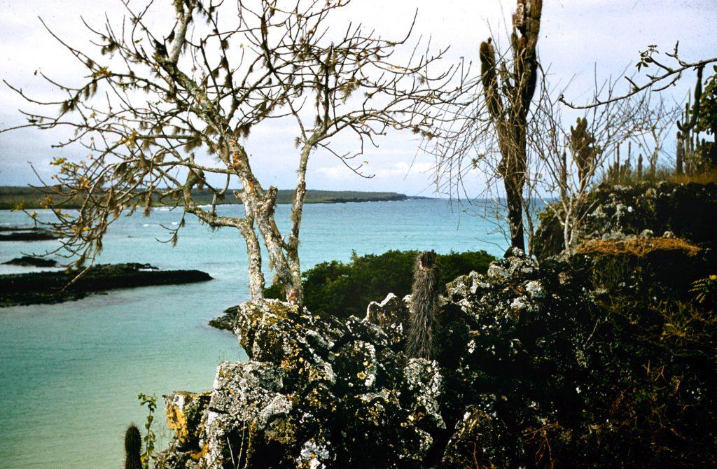 Galapogos Islands 1957Galapagos Islands 1957