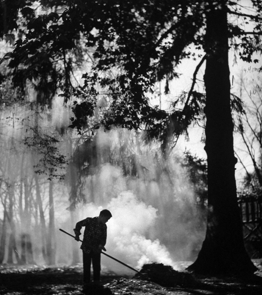Combining play and seasonal chore, Doyce Waddell stirs a pile of burning leaves, and the smoke and gentle wind almost smother the slanting sunlight of autumn.