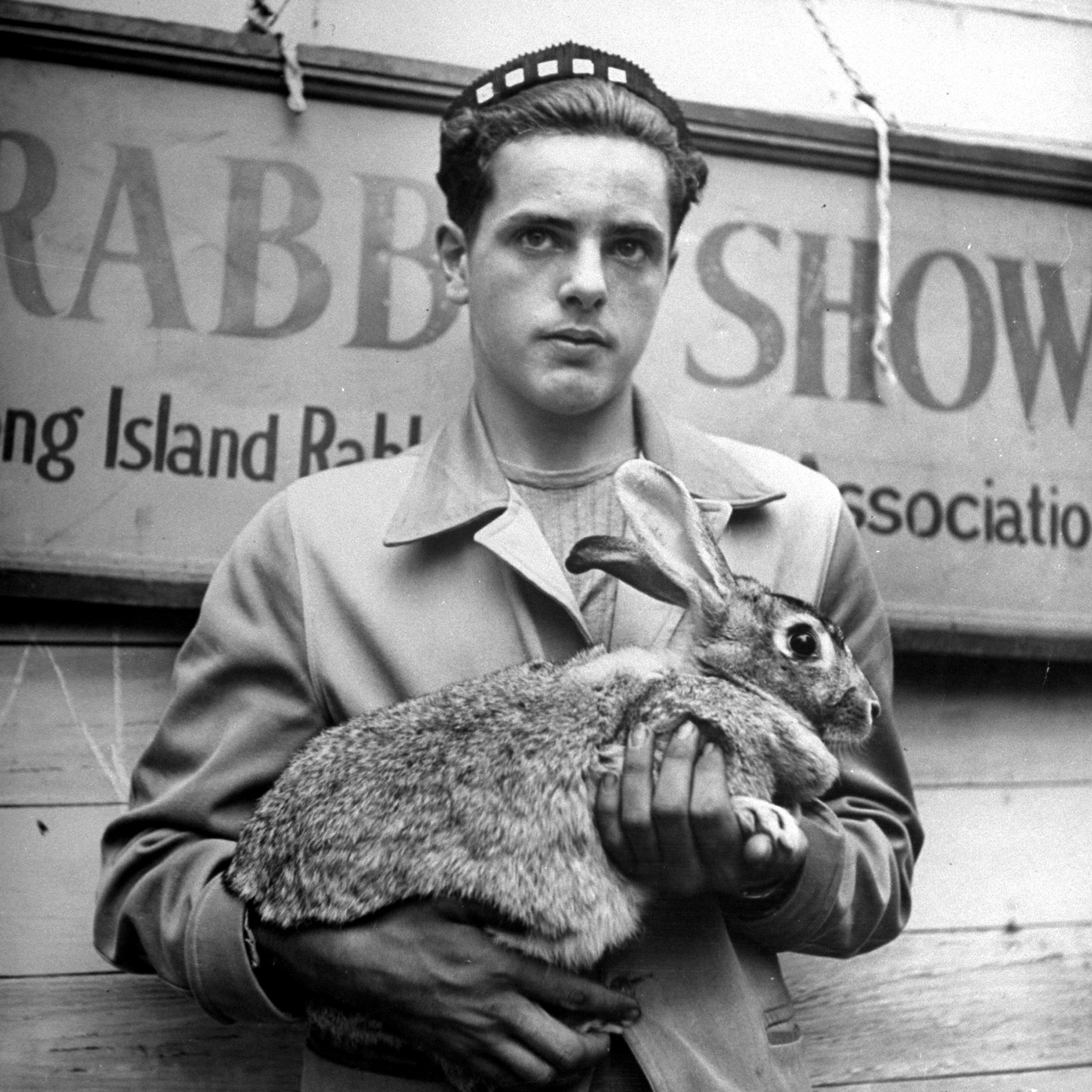 Long Island Rabbit Breeders Association Rabbit show, circa 1943.