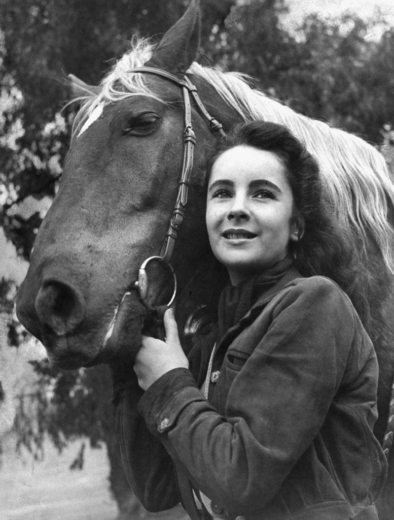 """Elizabeth Taylor posing with saddle horse after her smash movie debut in """"National Velvet,"""" 1945."""