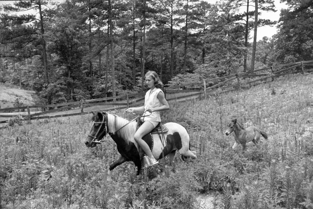Young girl riding her pony as colt follows, 1956.